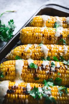 Grilled Corn with Spicy Habanero Honey Mayo is a quick summertime side that's perfect for any cook-out. It can be made on a grill or grill pan. #grilledcorn #habanerohoney #naturacentric #corn #summerfood #summerrecipes #veganrecipes #honeyrecipes #spicymayo Easy Vegetable Recipes, Vegetable Side Dishes, Side Dish Recipes, Honey Recipes, Dairy Free Recipes, Vegan Recipes, Gluten Free, Vegetarian Breakfast Recipes, Vegetarian Recipes Dinner
