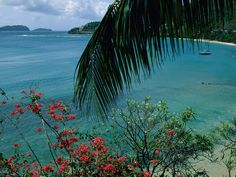 Bequia Island....Very hot, but very friendly.  Popular with the drinking, yachting crowd.