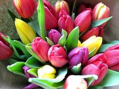 New amazing flowers pics every day, be the first to see them! Fantastic flowers will make your heart open. Easily get in a great mood and feel happy all day long! Tulips Flowers, All Flowers, Amazing Flowers, My Flower, Flower Power, Beautiful Flowers, Flowers Pics, Flowers Garden, Daisies