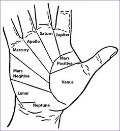"thehearthwitch: "" everything-wiccan: "" Palmistry shows how your entire life is mapped out in the palm of your hands. Even Julius Caesar used palmistry to help him make decisions. The future is read in..."