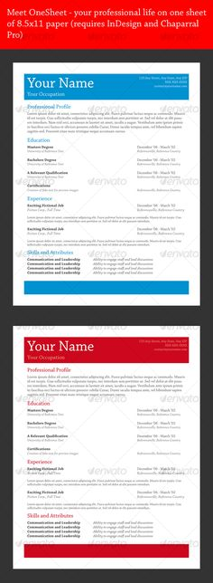 professional resume template for powerpoint