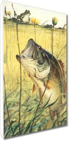 How To Get Started With Salt Water Fishing. Check out fishing. Fishing Photos, Bass Fishing Tips, Gone Fishing, Fishing Trips, Fish Banner, Fisher, Lake Art, Fish Crafts, Largemouth Bass