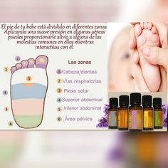 Doterra Oils @botiquindemamadoterra La Reflexologia De Tu Bebe Con #aceitesesencialesdoterra Es Una Terapia Eficaz... | - Pictigar
