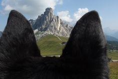 My holidays on italian Alps