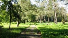 Parcul Dendrologic Amara