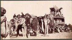 elephant carriage 1903