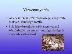 Testvériskolai Projekt Iregszemcse - Győr: A Víz Világnapja Green Day, Gold Rings