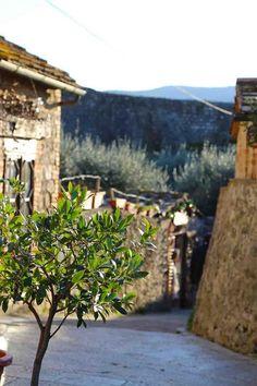 Monte righini Tuscany