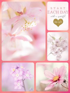 ❤️ beauty 17 Beautiful Collage, Beautiful Words, Beautiful Pictures, Word Collage, Color Collage, Collages, Good Morning Beautiful People, Sweet Words, Art Journal Inspiration