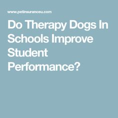 Do Therapy Dogs In Schools Improve Student Performance?