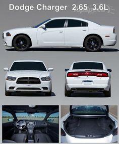 2014 Dodge Charger Pursuit picture - doc526638