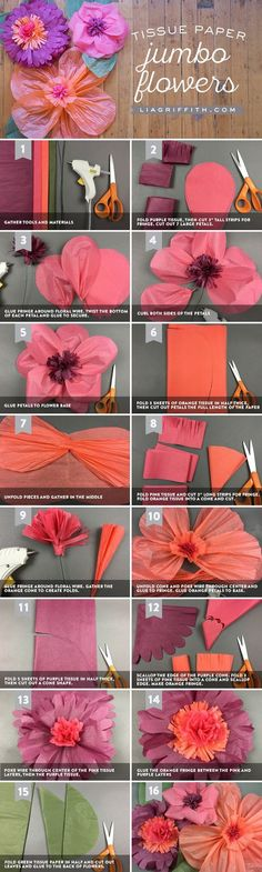 Jumbo Tissue Paper Flowers                                                                                                                                                                                 More
