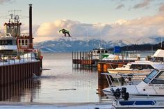 Snowboarder Jumping over Lake Tahoe  Photo by Ben Birk