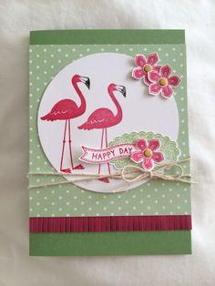 Flamingo Lingo, Stampin Up