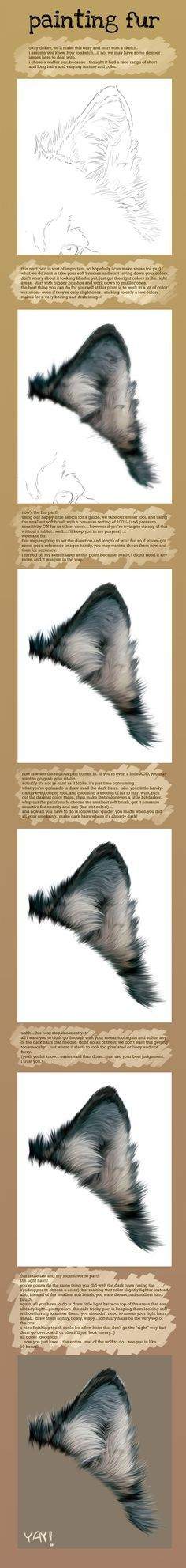 Fur Painting Tutorial by Novawuff.deviantart.com