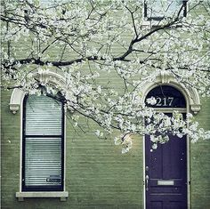 Mossy green painted brick home exterior with purple / eggplant painted door