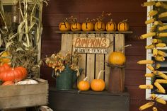 Harvest Party, Fall Harvest, Fall Store Displays, Fall Photo Booth, Vinyl Photo Backdrops, Pumpkin Photos, Autumn Display, Fall Diy, Fall Pumpkins