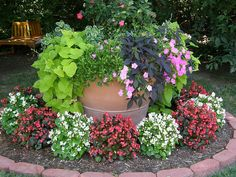 Now THIS is a potted plant!, via Flickr.