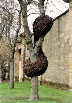 A birds nest pole wrap!   installation by laura ellen bacon