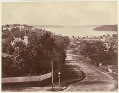 Ocean Ave,Double Bay,in eastern Sydney in 1876. State Library of NSW.   🌹