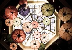 umbrellas, color, umbrella heaven, pretti, interior decor, umbrella instal