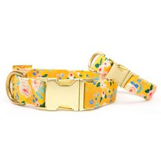 Sunny Days Dog Collar // Floral pet collar // Yellow dog collar // Chic modern pet collar with gold metal hardware Periwinkle Flowers, Mini Goldendoodle, Yellow Print, Australian Cattle Dog, Shelter Dogs, Pet Collars, Metal Buckles, Yorkie, Teacup Chihuahua