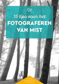 15 fototips voor het fotograferen in de mist #landschapsfotografie #natuurfotografie