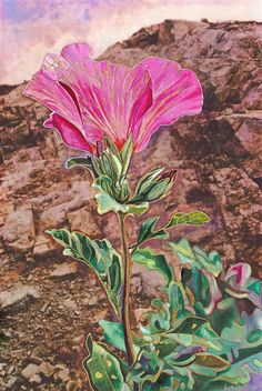 Rock of Ages: The LORD is my rock, my fortress, and my Savior... He is my shield, the power that saves me, and my place of safety. Psalm 18:2 #home #decor #art #christian #god #Rose #Sharon #Flower #painting