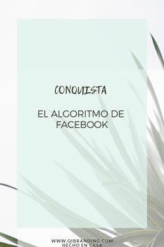 ALGORITMO de #facebook ¿Cómo conquistarlo y sacarle provecho? #algoritmoFacebook