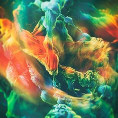 Varicose by Ari Weinkle, via Behance