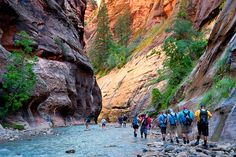 "Zion Narrows day hike. Starting at the Temple of Sinawava, you can hike up the Riverside Walk trail and then continue hiking right up the river to see some of the best ""narrows"" sections of the North Fork of the Virgin River."