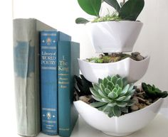 DIY tiered succulent planter using white ceramic bowls from the dollar store with small glasses glued between them.  I can see this for more than succulents...for example to hold makeup and brushes in the bathroom?