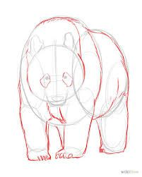 Image result for drawings of animals step by step