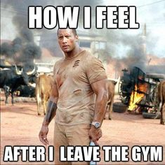 "The Rock! Dwayne ""The Rock"" Johnson (The Rundown) - Top 10 Movies Featuring Pro Wrestlers Fitness Humor, Gym Humour, Fitness Motivation, Workout Humor, Fitness Quotes, Mens Fitness, Exercise Meme, Funny Workout Memes, Cardio Fitness"
