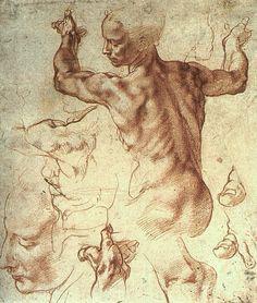 Michelangelo study