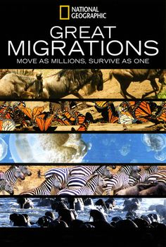 Great Migrations (2010)…