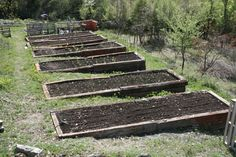 Vegetable Garden On A Slope Raised Garden Bed On Slope Garden Bed On Slope Hills… - Raised Vegetable Garden Terraced Vegetable Garden, Vertical Vegetable Gardens, Vegetable Garden Design, Veg Garden, Vegetable Bed, Vegetable Gardening, Garden Fencing, Fence, Planter Garden