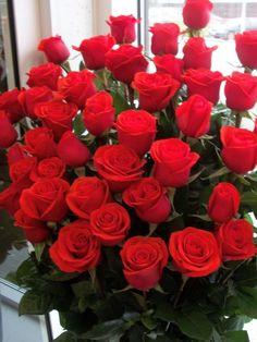 My Flower, Flower Power, Birthday Wishes For Daughter, Beautiful Rose Flowers, Rainbow Falls, Luxury Flowers, Happy Birthday Greetings, Cozy Christmas, Flower Wallpaper
