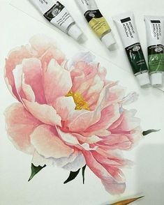 Super tattoo watercolor peony pink flowers ideas The Effective Pictures We Offer You About tatto Peony Painting, Acrylic Painting Flowers, Watercolor Flowers, Watercolor Paintings, Tattoo Watercolor, Floral Paintings, Watercolor Pencils, Watercolor Techniques, Art Floral