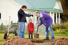 Adorable little girl and her grandparents planting a tree