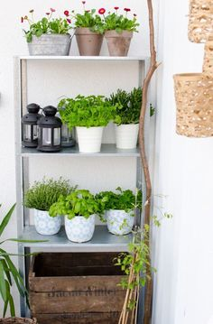 How To Rock Ikea Hyllis Shelves In Your Interior Ideas