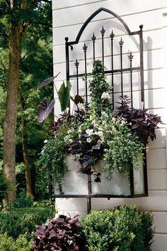 10 Lovely Wall Container Garden Ideas
