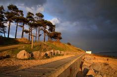 Late Evening Sunshine at Lepe Country Park, New Forest - jajaja ja sóc aqui Late Evening, Forest Landscape, New Forest, Silk Road, Sustainable Architecture, Portsmouth, Airbrush, Hampshire, Beautiful Landscapes