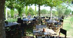 Savor the wine just meters from where the grapes were grown!