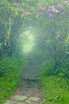 Levenspad, door het donker naar het licht, schoonheid, meer mogelijkheden dan je nu kan zien.... etc etc.. veel uit te halen!