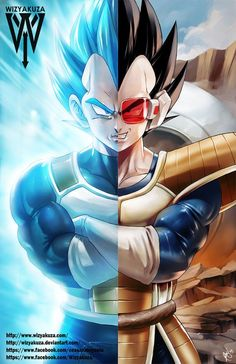 Vegeta - Dragon Ball Z - Super Saiyan God & Old School Split - 11 x 17 Digital Print