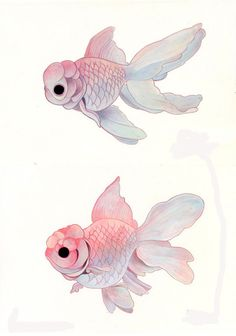 Beautiful illustration by ~hikarishimoda Art And Illustration, Illustrations, Inspiration Art, Art Inspo, Animal Drawings, Art Drawings, Fish Drawings, Arte Sketchbook, Fish Art