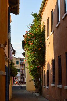 Caorle Venezia Veneto Italy Italy Street, Street Trees, Adventures Abroad, Alleyway, Murano, Europe, Facades, World, Outdoor