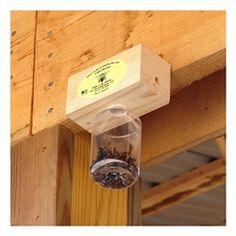 Carpenter Bee Catcher Outdoor Projects, Wood Projects, Outdoor Ideas, Bee Catcher, Carpenter Bee Trap, Bee Traps, Outdoor Spaces, Bottle Opener, Barware