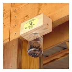 how to make a homemade fly catcher